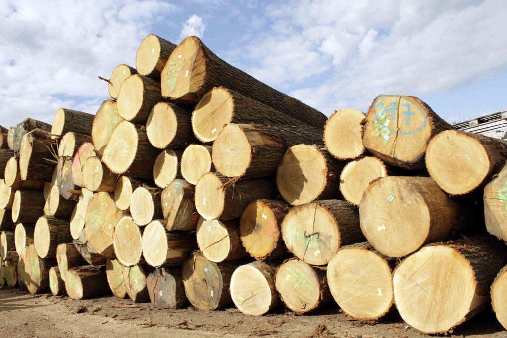 dubove drevo vyroba nabytku